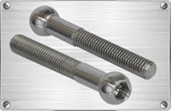 Titanium spherical socket bolt for