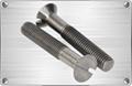 Titanium Countersunk Head Slotted Screw