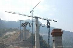 tower crane R6013