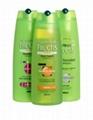 Garnier Fructis shampoo L'oreal Elseve