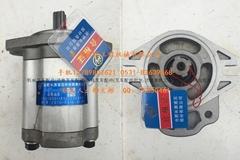 济南杭州15H叉车配件液压齿轮泵