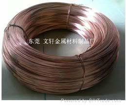 供应3.7*0.95H65拉链专用黄铜扁线 1