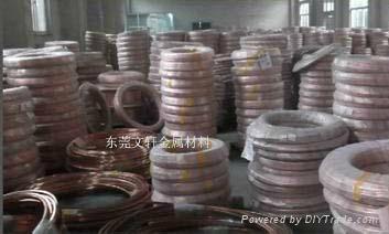 供应弹簧专用磷铜线 2