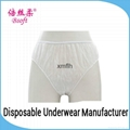 Hygienic Disposable Menstruation Panties