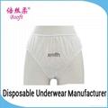 Hygienic Disposable Menstruation Panties
