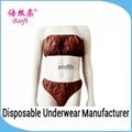 Disposable Panties Bra Set Ladies