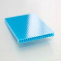 twin wall polycarbonate sheet  3