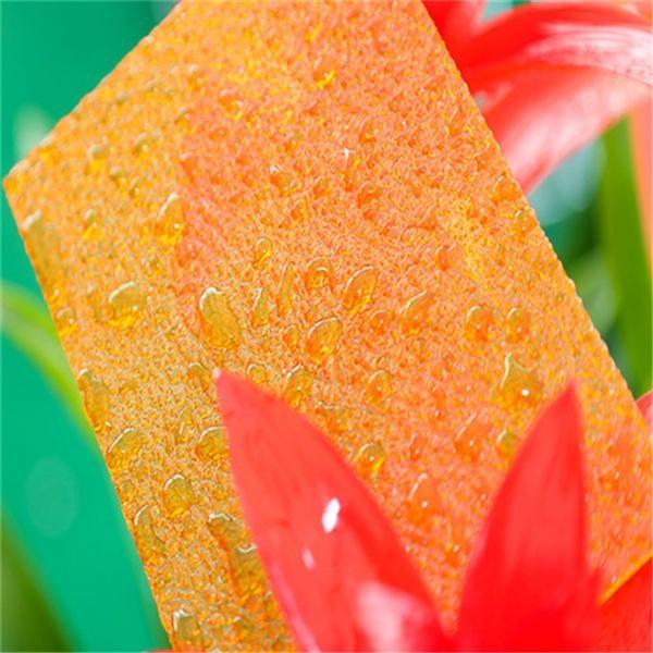 XINHAI Grade A polycarbonate embossed sheet 3