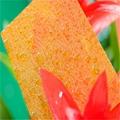 XINHAI Transparent embossed polycarbonate sheet 5