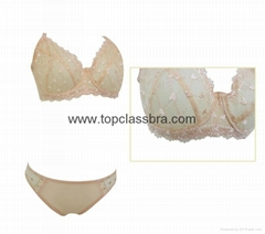 2016 Summer Stylish Ultra-Thin Lingerie Bra Set with Beautiful Embroidery