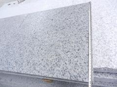 Shandong White Granite Paving tiles