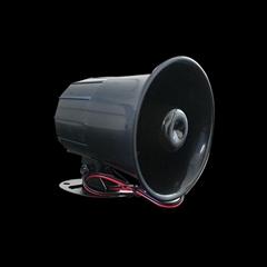 12VDC House alarm system