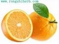 Natural Sweetener Bitter Orange