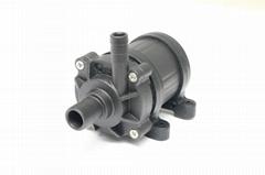 DC12V/DC24V Brushless DC water pump RN40