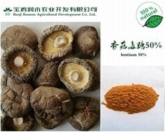 香菇提取物 香菇多糖50%