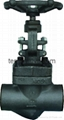 Forge steel SW or NPT ends globe valve