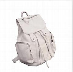 Big travel backpack
