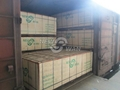 marine plywood, brown film faced shuttering plywood manufacturer 4