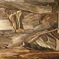 Agar wood 1