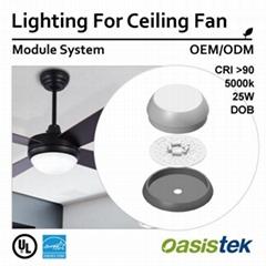 Lighting For Ceiling Fan OEM ODM