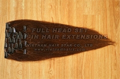 Clip-in hair extensions high quality