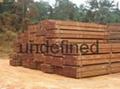 Azobe wood Add us on skype at