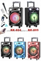 portable amplified speakers BK-805
