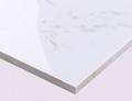 Full Glazed Polished Tiles NEW AJAX