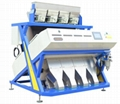 VISION Manufactured 192 Channels Shelled Pumpkin seed optical separating machine 2