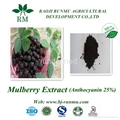 mulberry extract anthocyanidins 25%