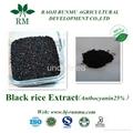 black rice extract anthocyanidins 25%