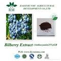 China bilberry extract anthocyanidins