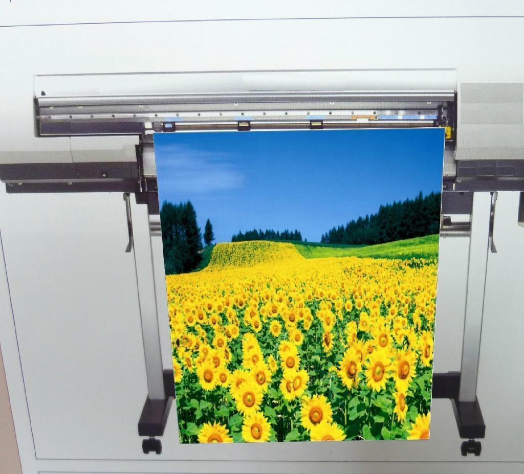 AP-6608-N 油性霧面耐水油畫布 (Solvent & Eco Solvent & Latex & UV) 1