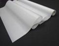 AS-109  油性亮面耐水珍珠畫布 ( Solvent & Eco Solvent & Latex & UV ) 4