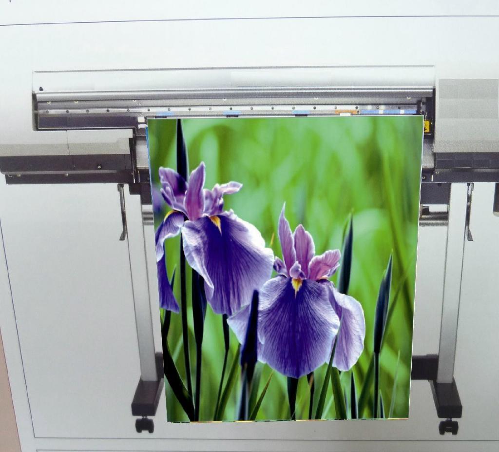 AP-6108-N  油性霧面耐水單透絹布 ( Solvent & Eco solvent & Latex & UV ) 1