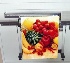 AP-5759 油性亮面耐水單透旗布 (Solvent & Eco solvent & Latex & UV ink)