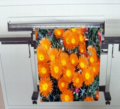 AP-5459 油性亮面耐水細紋油畫布 (Solvent & Eco-solvent & Latex & UV)