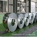 55% GA  ALUME ALUZINC STEEL COIL ANTI-FINGER  1