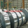 GA  ANIZED STEEL STRIP