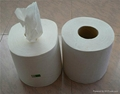 Soft Center feed Pull hand roll Paper
