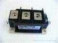 艾赛斯 二极管模块MDD95-16N1B 2