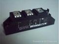 艾赛斯 二极管模块MDD95-16N1B 3