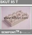 西门康晶闸管 SKUT115T 1