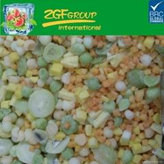 IQF frozen mixed fruit