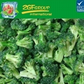 new season IQF deep freeze type china broccoli flower bulk packing 1