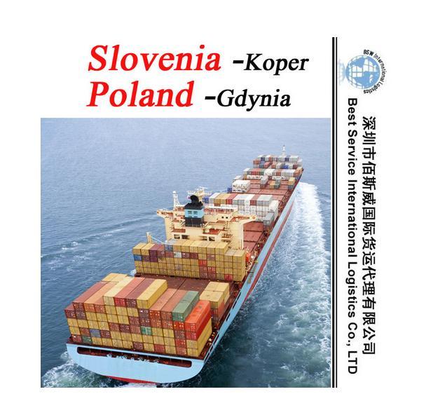 供应国际海运整柜到沙迦  1