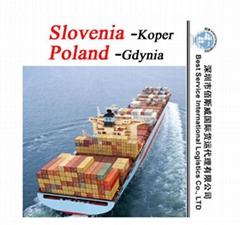 供應國際海運整櫃到沙迦