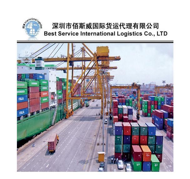 供应国际海运整柜到沙迦  3