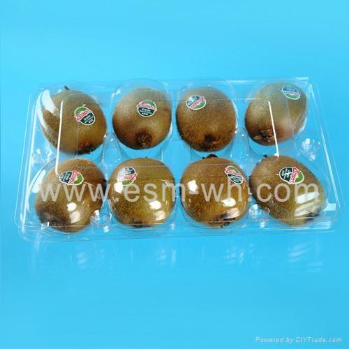 8 cell kiwi-fruit disposable plastic fruit  clamshell  1