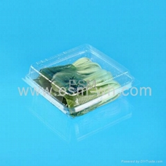 transparent  disposable plastic food container for salad